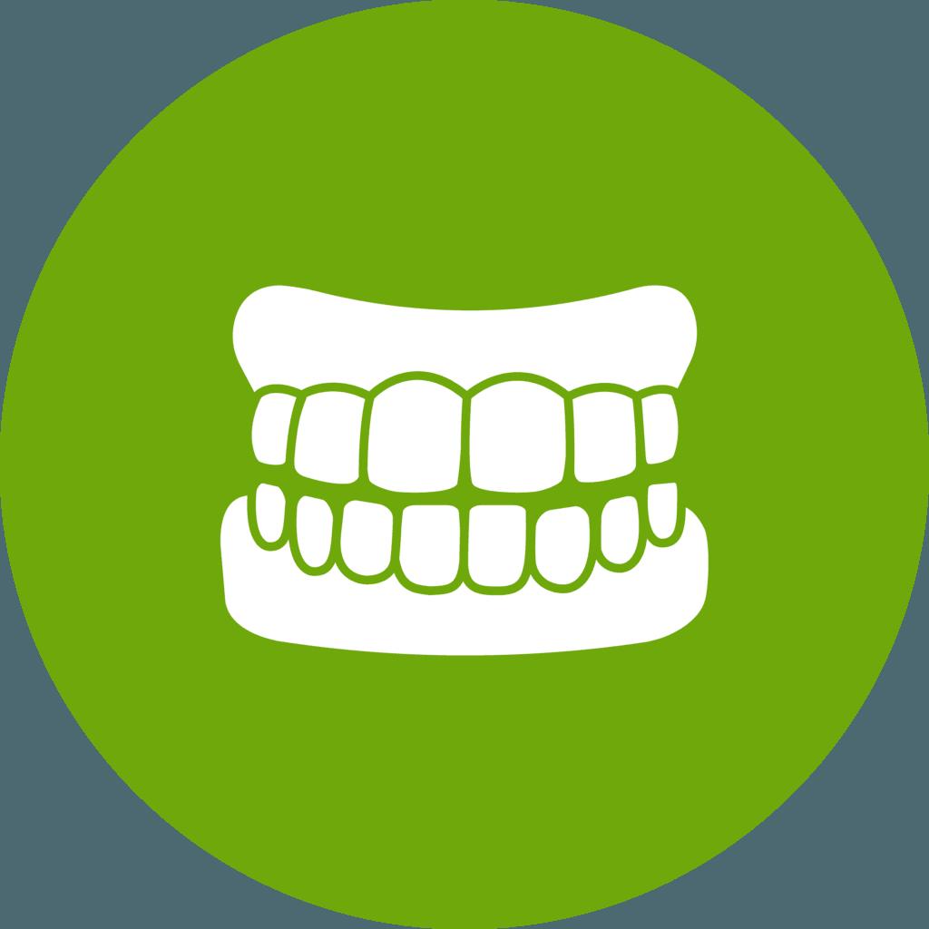 Denture Repairs Icon 2